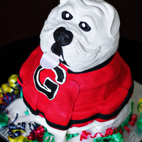 Uga Bulldog  Tuxedo Cake (Chocolate and Vanilla Bean layers), filled with Whipped Chocolate Ganache and covered in Vanilla Bean Buttercream and...