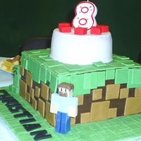 Minecraft Cake I made this cake for my son's 8th birthday. He's a big fan of the game minecraft! It's a dirt cube from the game, with a...