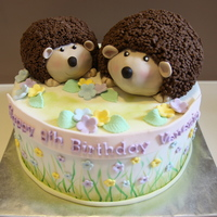 "Hedgehog Cake 10"" chocolate cake with choc buttercream and ganache. Hedgehogs make of RKT with gp spikes indivually stuck on."