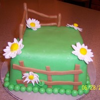 Country Fence With Daisies Green fondant covers the cake. The fence, flowers and balls (or peas as my hubby would call them) are also rolled fondant.