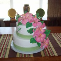 Hummingbird Birthday Cake I made this cake for a 100th birthday party! The birthday girl loves hummingbirds and hibiscus and the colors were in keeping with the...