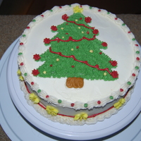 Christmas Tree Cake This is my cake that I started in class 2 of basic. My first cake with a little training under my belt.