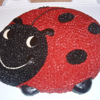 Ladybug Loved this ladybug cake! Thanks for looking