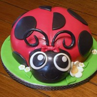 3D Ladybug Cake  I donated this cake for a silent auction held at a 5K Benefit Run for a little 9 year old girl with cancer in my community. It brought in $...