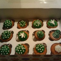 X-Mas Cupcakes   gree icing with silver painted decoration