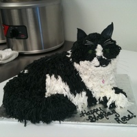 Black & White Cat Cake