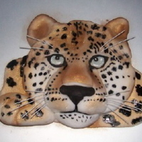 Snow Leopard This is a snow leopard made from icing which I built up in layers and hand painted