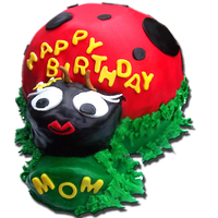 Miss Love Bug Lady Bug This little bug is a strawberry sprinkled cake and filled it with creamy vanilla pudding.