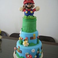 Super Mario Brothers This was my first attempt at making a cake. Considering it was a learning process, I am very pleased with the outcome. Mario characters are...