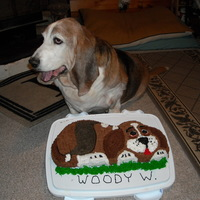 Bassett Hound Cake A birthday cake for our senior citizen dog, sadly it was his last.