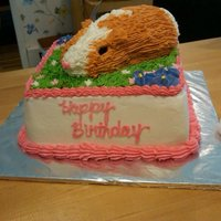 Guinea Pig Cake A friend's granddaughter wanted a cake that looks like her new guinea pig. I came up with this, rather than having to chop into a...