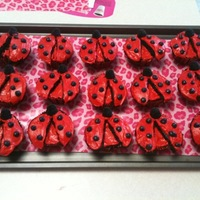 "Ladybug Cupcakes My youngest daughter's nickname is ""Ladybug"", so I thought it would be cute to make ladybug cupcakes for her class, only to..."