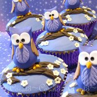Hoot  White chocolate & raspberry mud cakes with white chocolate ganache & fondant. Owls are made out of fondant icing with a little gum...
