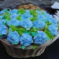 Hydrangea Cupcake Basket Bouquet White cupcakes with buttercream. Basket held exactly 23 cupcakes. I forgot to take pictures before dropping off at the event. A friend took...