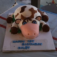 Cow Cake i made thi for my sons 1st birthday...
