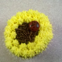 Sunflower With Ladybug This was not how I intended this cupcake to look. My client was dead set against buttercream frosting and only wanted cream cheese frosting...