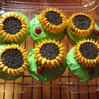 Sunflower Cupcakes Chocolate Chip Cupcakes decorated with Oreos to make them look like sunflowers and m&m's as ladybugs.