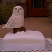 Snow Owl   Made this for a bday. Poured the eyes with sugar