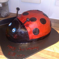 Gaston The Ladybird   I made this ladybird from the popular childrens programme Ben & Holly's Little Kingdom. My son loved it!
