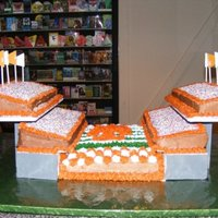 Tn Vols Birthday Stadium Cake