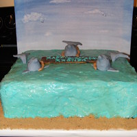 Dolphin Themed Cake 14 in. square cake. Covered in blue/green buttercream and piping gel. Brown sugar around edges. Painted canvas to look like the sky...