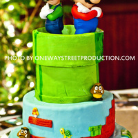 Mario & Luigi Mario Bros groom's cake. chocolate SC cake with chocolate/ kahlua ganache