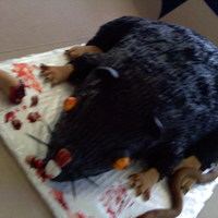 Rat Cake Nov 2010   this cake was a blast to make