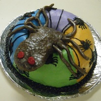 Spider Halloween Cake Buttercream covered Double Chocolate Almond cake. Giant spider in the middle is rice krispie treat covered in buttercream, and rolled out...