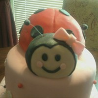 Ladybug Cake a popular cake for me. a 2 tier pink cake with red ladybugs. So adorable!