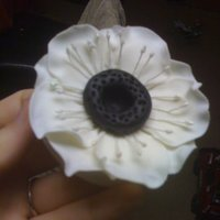 Anemone- Gumpaste This is my first anemone what do you think? I plan to charge $10 for an added flower to a cake.