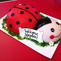 Ladybug Baby Shower   Flowers and tag in fondant, the rest is buttercream.