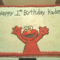Kaiden Kaiden loves elmo
