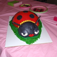 Ladybug Cake This was the first cake I have ever made. It is chocolate cake with chocolate strawberry ganache filling and covered with MMF.