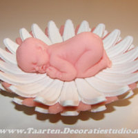 Baby In Flower Decoration is made of sugarpaste, both made with a mold.