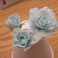 Gumpaste Roses I'm taking a class @ Joanns and last night we learned how to make gumpaste roses.. i LOVE how mines turned out :-)