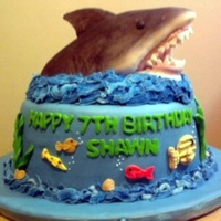Shark Cake   shark is made of rice crispy treats.. covered in mmf.. sprayed with spray food color. Fun to do!