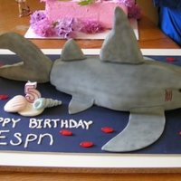 Shark Cake This was a really fun cakd to make for my son's birthday. I made it in 2009. I shaped the whole cake and covered it with fondant. The...