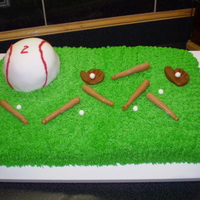 Baseball Field baseball field piped buttercream, ball covered in fondant with piping gel, balls and bats made from fondant.