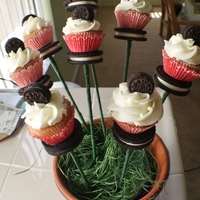 Cupcake Skewer Boquet Mini chocolate chip cupcakes on an Oreo platform, topped with a mini Oreo, then arranged in a boquet