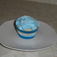 Cupcake WASC with whipped meringue frosting