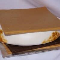 Smore I LOVE smores so when a lady asked me to make one for her daughter, I jumped on it. Fondant covered cardboard top, mmf covered vanilla cake...