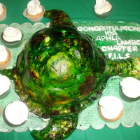 Turtle Cake By Tracy S
