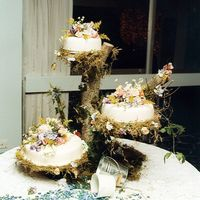 Garden Wedding  This is a pic of my wedding cake. Didn't had time to make sugar flowers. I had soo much fun designing it. My dad and I searched for...