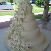 Orchids And Butterflies Wedding Cake