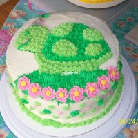 "Turtle Birthday Cake One of my first two ""decorated"" cakes since diving head first into this very addictive hobby. This is a scratch white cake with a..."