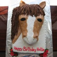Horse 13x9 + 13x9 carved cake; BCI; fondant eyes and fondant covered rice crispy ears. Thanks to Mac for uploading your horse!