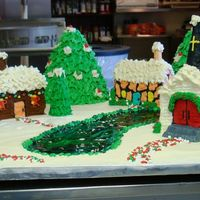 Winter Wonderland This is the cake we did for the Pythian retirement home Christmas party.
