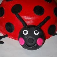 Ladybug All Fondant. Thanks to all who gave me advice especially Sugarshack.