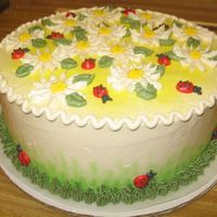 Daisies And Ladybugs This was a cute little cake!
