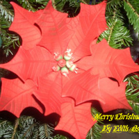 Poinsettia Flower   This was my second try at making poinsettias.
